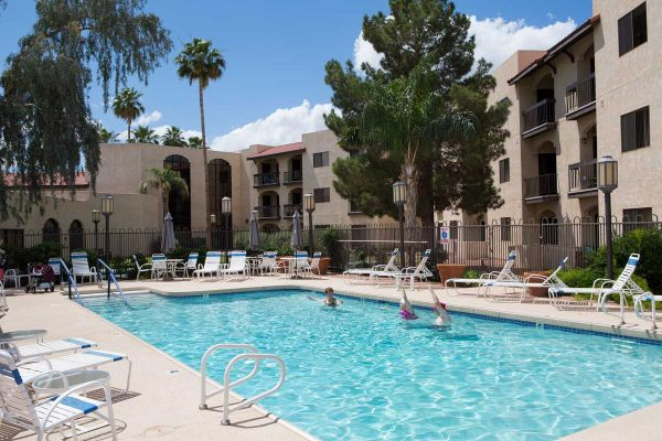 Outdoor swimming pool and lounge chairs surrounded by palm trees at Sierra Winds