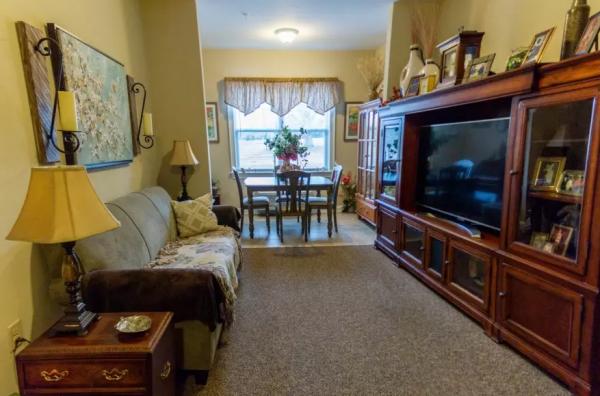 Arbor Ridge at Stanleyville living room