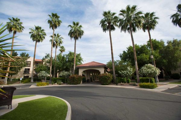 Main entrance flanked by tall palm trees at Sierra Winds