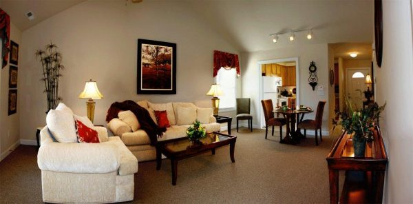 The Glens at Birkdale Commons model living room