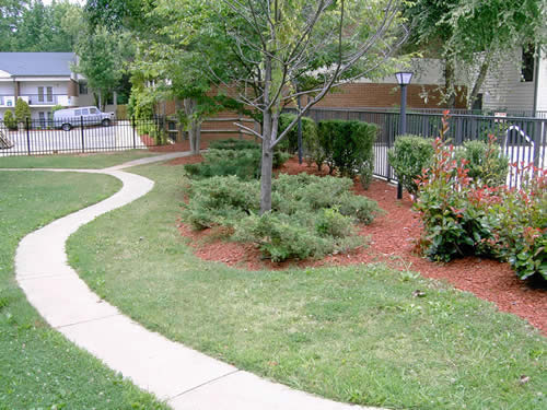 Walking paths lined with lush green lawn and trees on the grounds of Senior Villages