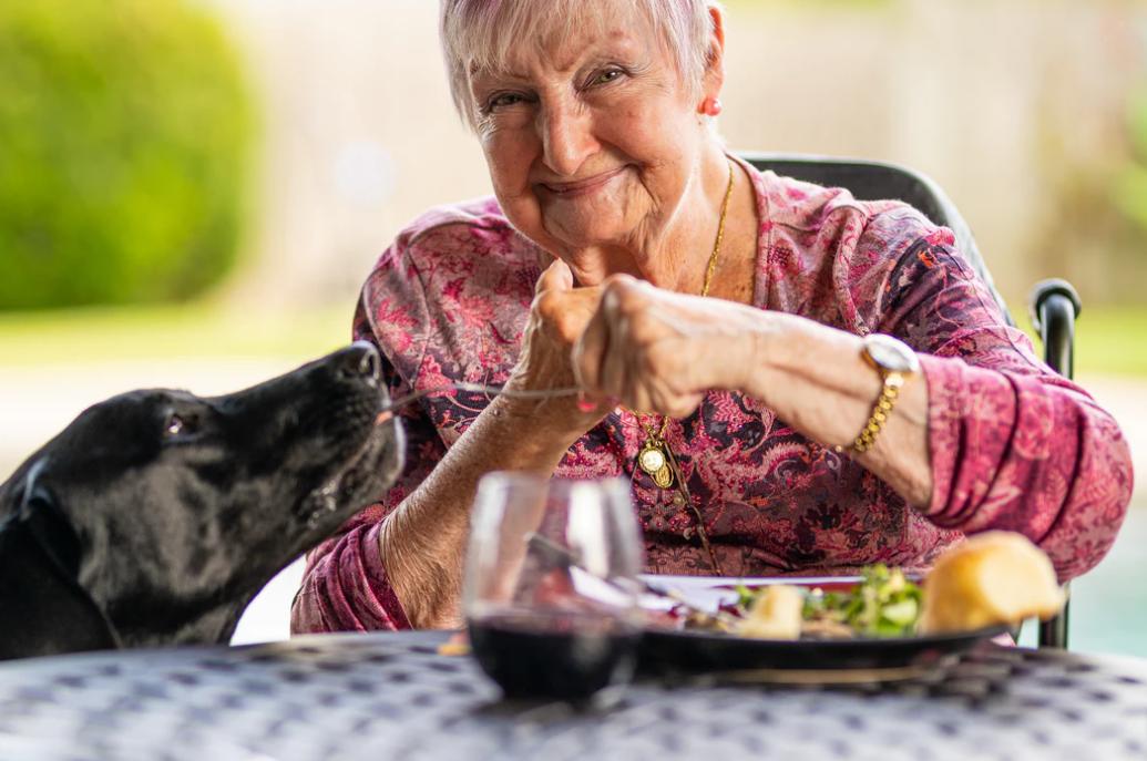 Senior woman eating outside while a black dog smells food